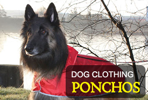 dog-clothing_3.jpg