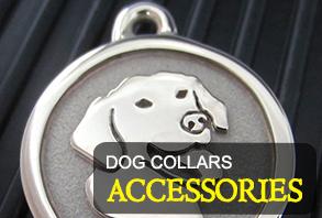 dog-collars_accessories.jpg