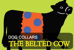 dog-collars_the-belted-cow.jpg