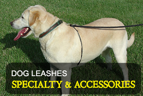 dog-leashes_specialty-and-accessories.jpg