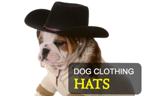 dog_clothing-hats.jpg