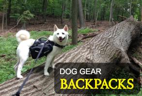 dog_gear-backpacks.jpg