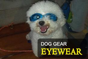 dog_gear-eyewear.jpg