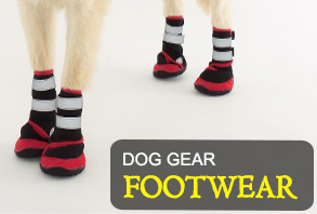 dog_gear-footwear.jpg