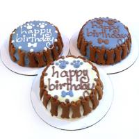 Custom Dog Birthday Cake - Classic - Boy