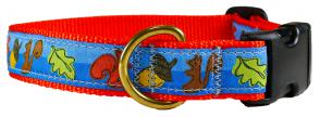 Squirrels - 1-inch Ribbon Dog Collar