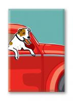 Jack Russell Terrier (5 Magnets)