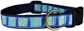 Hadlock (Don't Leave ME) - 1-inch Ribbon Dog Collar