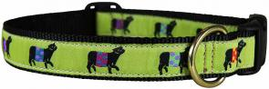 Beltie Cow (Lime) - 1-inch Ribbon Dog Collar