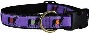 Beltie Cow (Purple) - 1-inch Ribbon Dog Collar