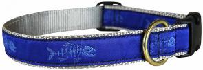 Rogue Fish (Blue) - 1-inch Ribbon Dog Collar