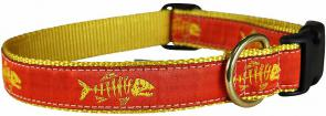 Rogue Fish (Tangerine) - 1-inch Ribbon Dog Collar