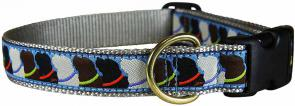 Who Wants Treats? - 1-inch Ribbon Dog Collar