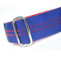 CH-dog-collar-blue-1.jpg