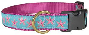 Starfish (Aqua & Pink) – Ribbon Dog Collar