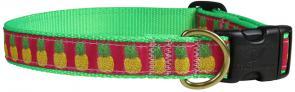 Pineapple - 1-inch Ribbon Dog Collar