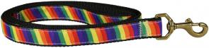 Rainbow - 1-inch Ribbon Dog Leash