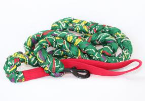 Braided Cloth Dog Leash - Green