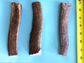 Elk Antler Dog Chews - Large