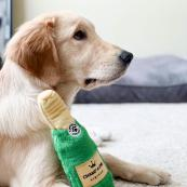 Squeaky Crunchy Dog Toy - Champagne
