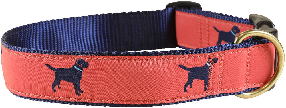 bc-ribbon-dog-collar-nantucket-lab-1-25