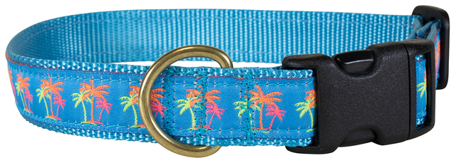 bc-ribbon-dog-collar-neon-palms-1-inch