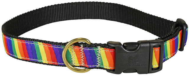 bc-ribbon-dog-collar-rainbow-1-inch-1