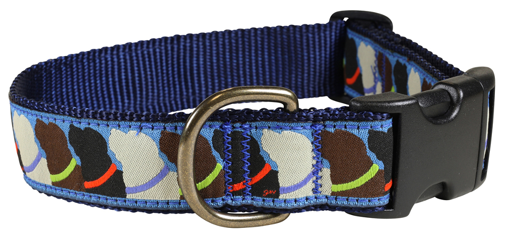 bc-ribbon-dog-collar-who-wants-treats-1-25