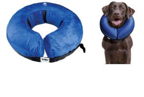 canine-health_cloud-collar