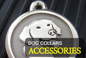 dog-collars_accessories.jpg