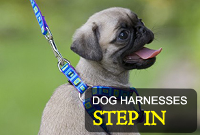 dog-harnesses_step-in.jpg