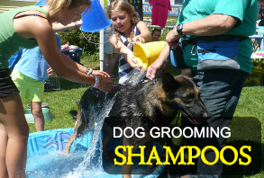 dog_grooming-shampoos.jpg