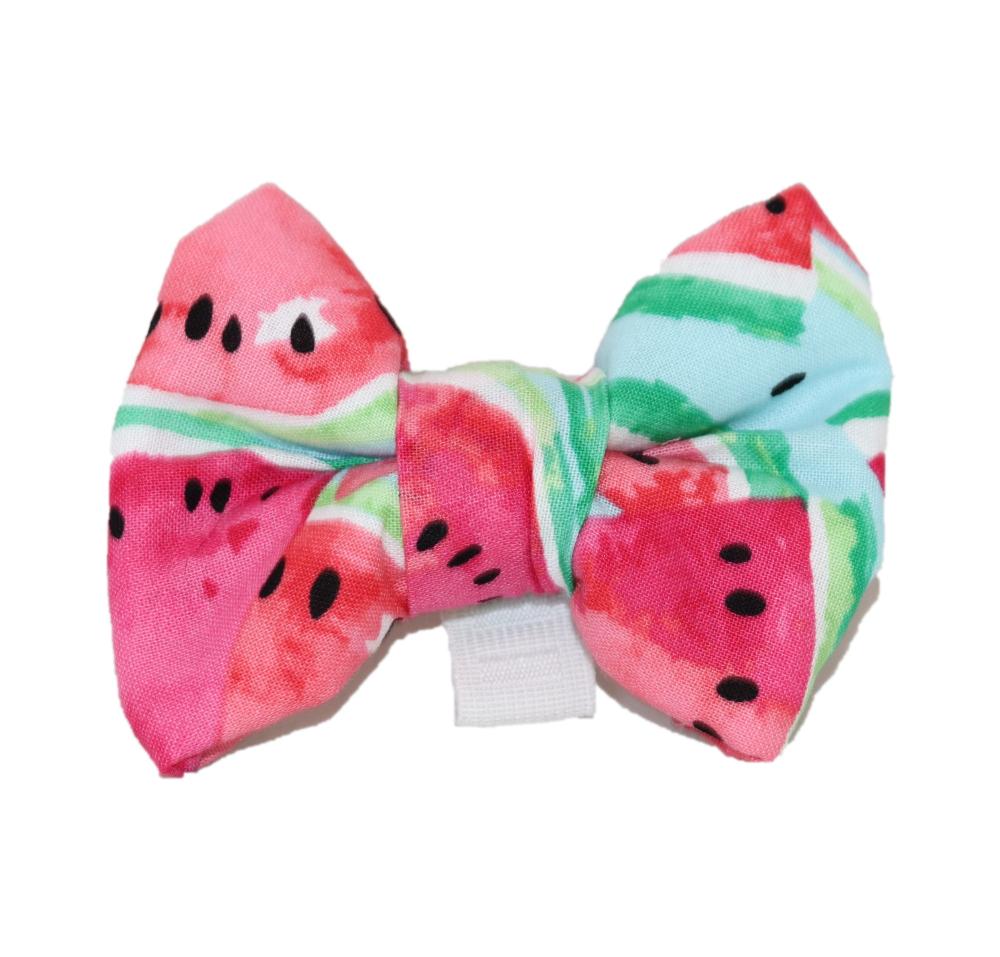 dog-bow-tie-watermelon-2