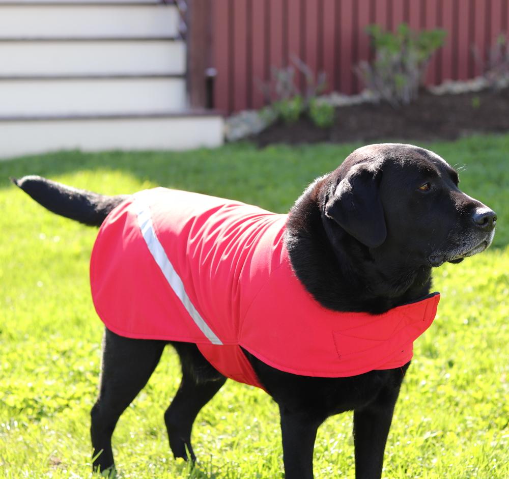 dsd-waterproof-dog-coat-red-1