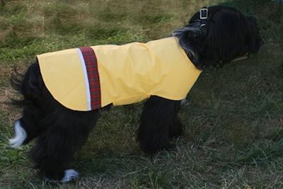 dsnd-dog-raincoat-yellow-3