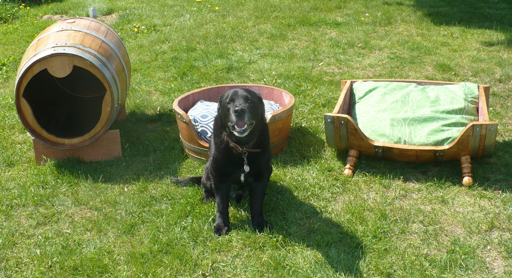 hh-dog-bed-small-7.jpg