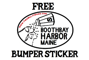 FREE BUMPER STICKER