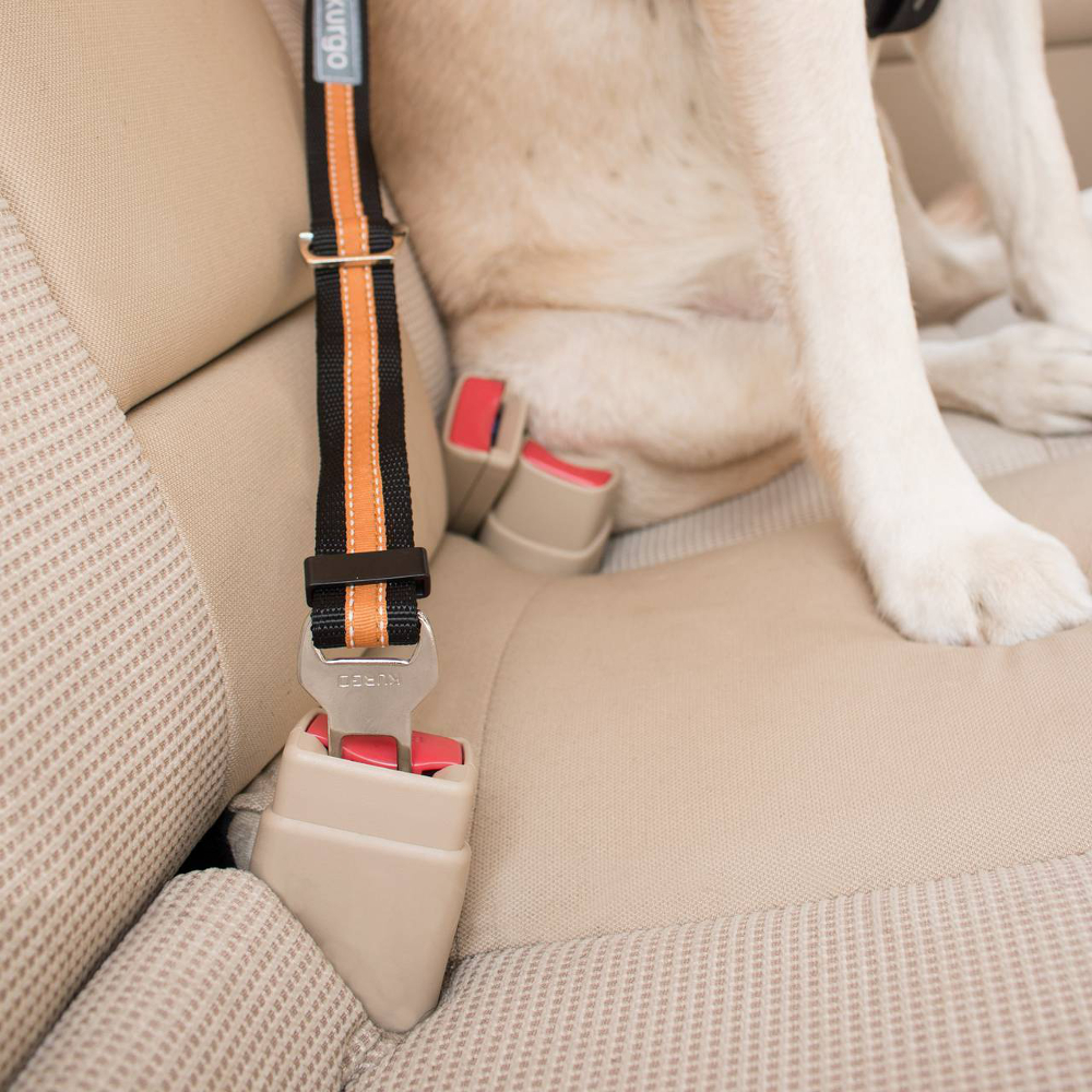 kg-dog-car-safety-seatbelt-tether-3.jpg