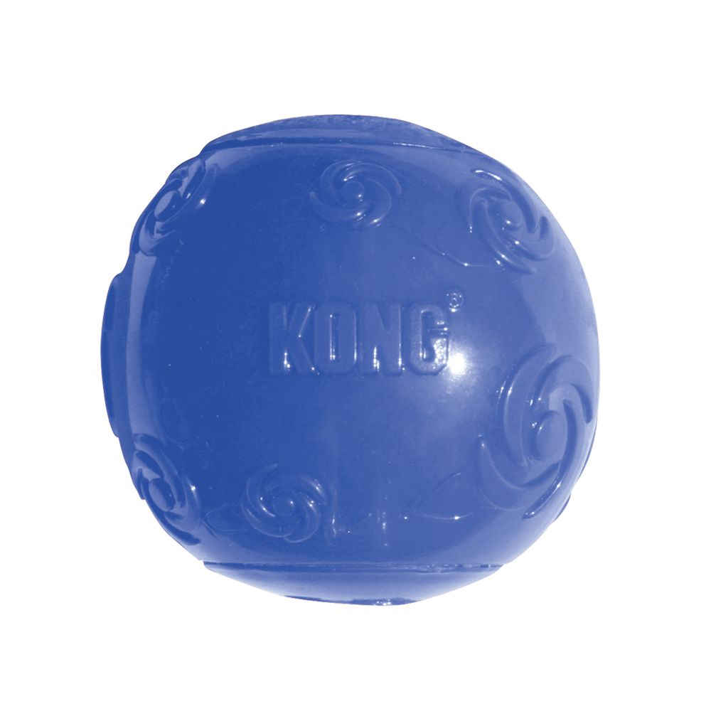 kg-dog-squeaky-treat-toy-3