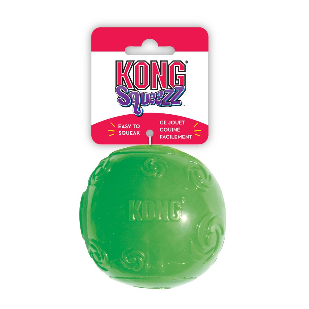 kg-dog-squeaky-treat-toy-4