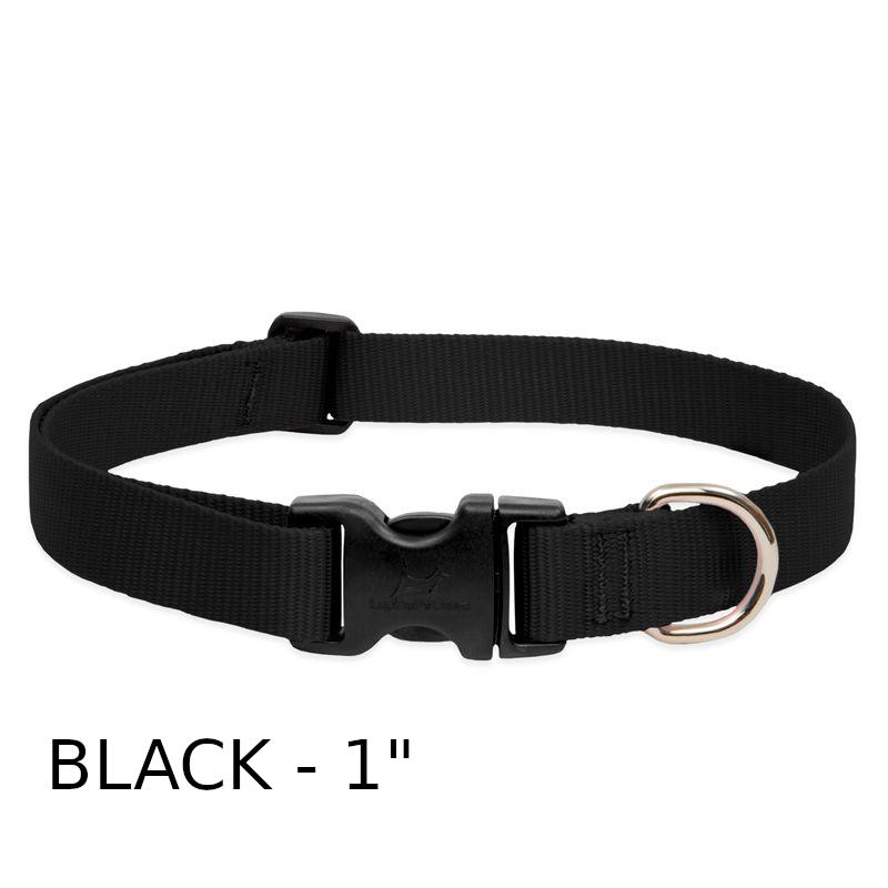 lp-dog-collar-nylon-black-1-inch