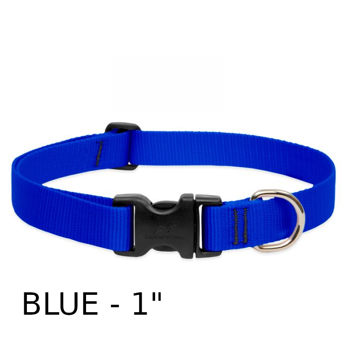 lp-dog-collar-nylon-blue-1-inch