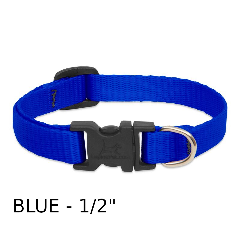 lp-dog-collar-nylon-blue-1_2-inch