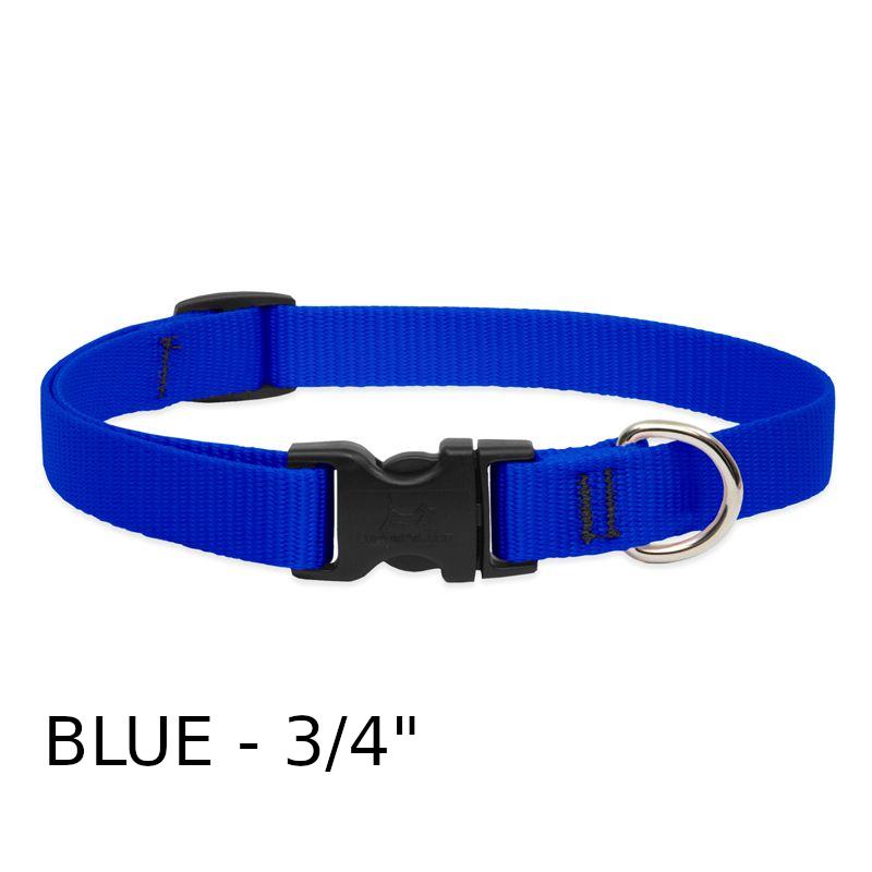 lp-dog-collar-nylon-blue-3_4-inch