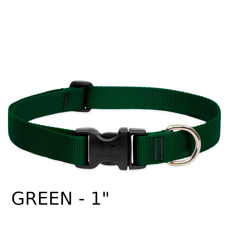 lp-dog-collar-nylon-green-1-inch