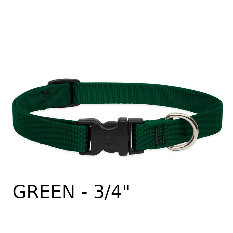 lp-dog-collar-nylon-green-3_4-inch