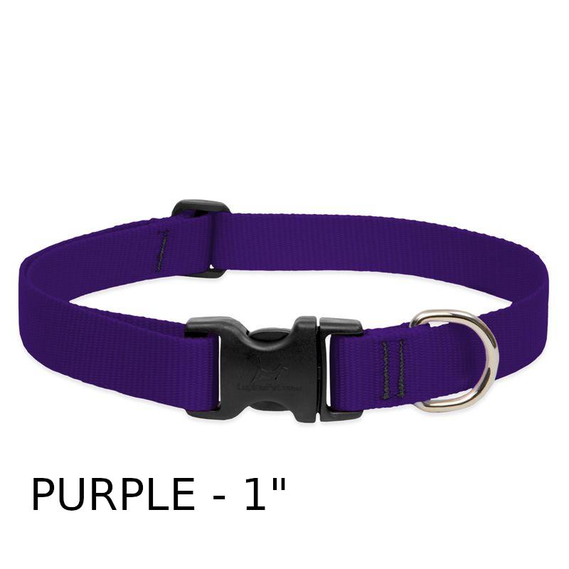 lp-dog-collar-nylon-purple-1-inch