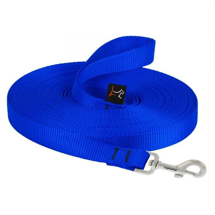 lp-dog-leash-training-blue