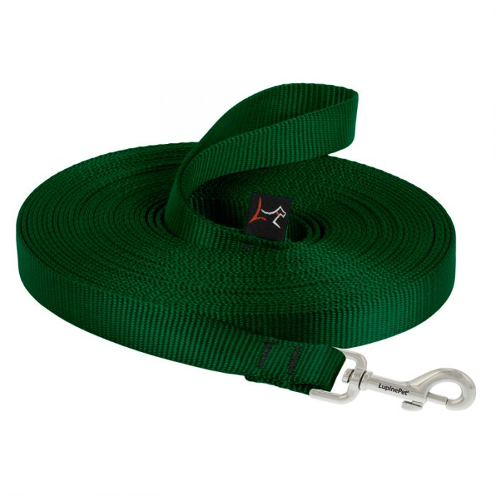 lp-dog-leash-training-green