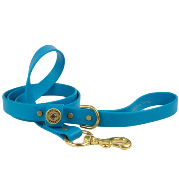 ou-waterproof-dog-leash-aqua